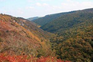 Teign Valley Gorge